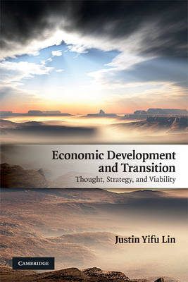 Economic Development and Transition: Thought, Strategy, and Viability (Paperback)