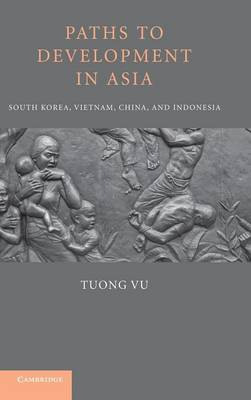 Paths to Development in Asia: South Korea, Vietnam, China, and Indonesia (Hardback)