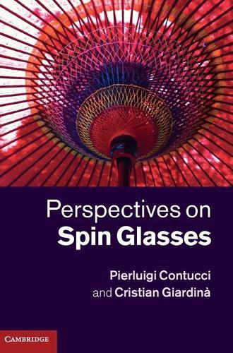Perspectives on Spin Glasses (Hardback)