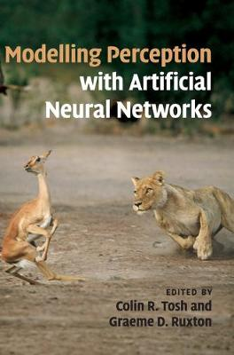 Modelling Perception with Artificial Neural Networks (Hardback)