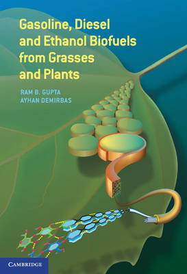 Gasoline, Diesel, and Ethanol Biofuels from Grasses and Plants (Hardback)