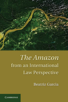The Amazon from an International Law Perspective (Hardback)