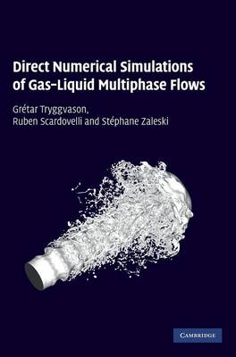 Direct Numerical Simulations of Gas-Liquid Multiphase Flows (Hardback)