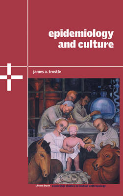 Cambridge Studies in Medical Anthropology: Epidemiology and Culture Series Number 13 (Hardback)