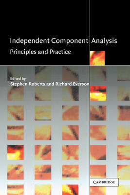 Independent Component Analysis: Principles and Practice (Hardback)