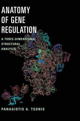 Anatomy of Gene Regulation: A Three-Dimensional Structural Analysis (Hardback)