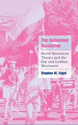 The Unfinished Revolution: Social Movement Theory and the Gay and Lesbian Movement - Cambridge Cultural Social Studies (Hardback)