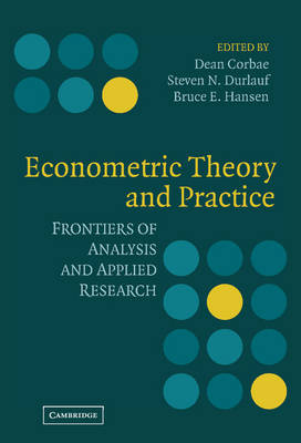 Econometric Theory and Practice: Frontiers of Analysis and Applied Research (Hardback)