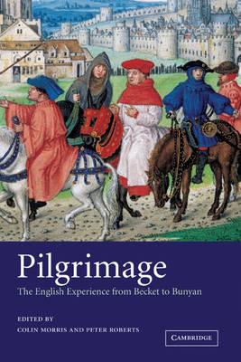 Pilgrimage: The English Experience from Becket to Bunyan (Hardback)