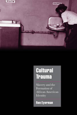 Cambridge Cultural Social Studies: Cultural Trauma: Slavery and the Formation of African American Identity (Hardback)