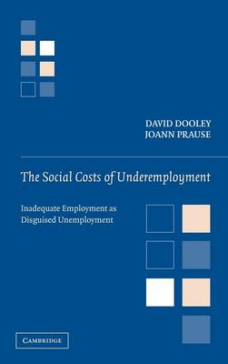 The Social Costs of Underemployment: Inadequate Employment as Disguised Unemployment (Hardback)