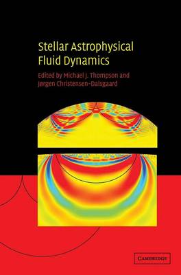Stellar Astrophysical Fluid Dynamics (Hardback)