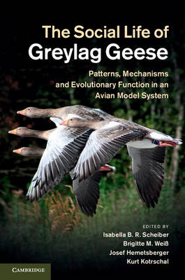 The Social Life of Greylag Geese: Patterns, Mechanisms and Evolutionary Function in an Avian Model System (Hardback)