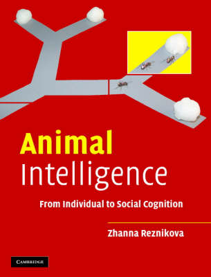 Animal Intelligence: From Individual to Social Cognition (Hardback)