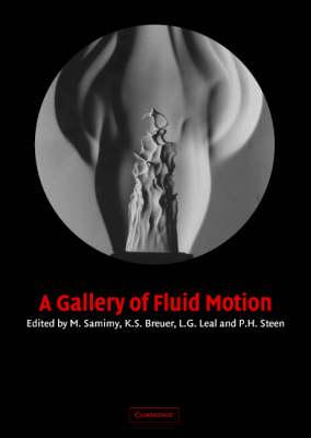 A Gallery of Fluid Motion (Hardback)