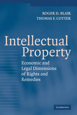 Intellectual Property: Economic and Legal Dimensions of Rights and Remedies (Hardback)