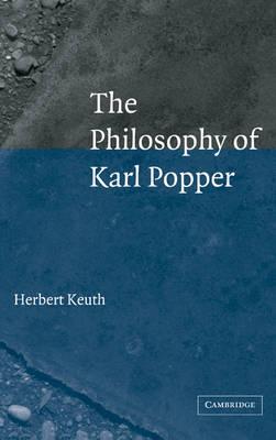 The Philosophy of Karl Popper (Hardback)