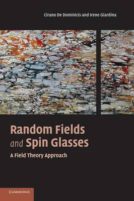 Random Fields and Spin Glasses: A Field Theory Approach (Hardback)