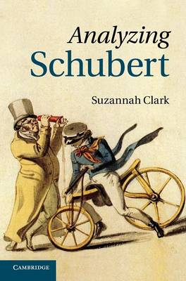 Analyzing Schubert (Hardback)