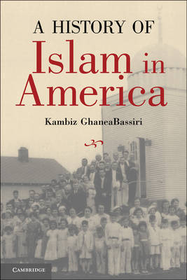 A History of Islam in America: From the New World to the New World Order (Hardback)