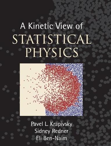 A Kinetic View of Statistical Physics (Hardback)