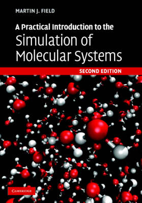 A Practical Introduction to the Simulation of Molecular Systems (Hardback)