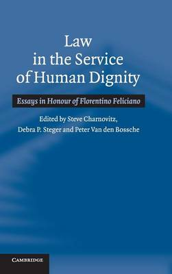 Law in the Service of Human Dignity: Essays in Honour of Florentino Feliciano (Hardback)