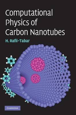Computational Physics of Carbon Nanotubes (Hardback)
