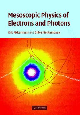 Mesoscopic Physics of Electrons and Photons (Hardback)
