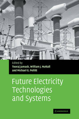 Future Electricity Technologies and Systems - Department of Applied Economics Occasional Papers 67 (Hardback)