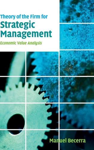 Theory of the Firm for Strategic Management: Economic Value Analysis (Hardback)