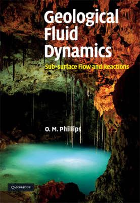 Geological Fluid Dynamics: Sub-surface Flow and Reactions (Hardback)