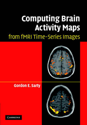 Computing Brain Activity Maps from fMRI Time-Series Images (Hardback)