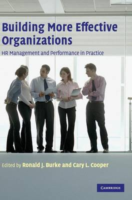 Building More Effective Organizations: HR Management and Performance in Practice (Hardback)
