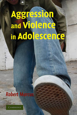 Aggression and Violence in Adolescence (Hardback)