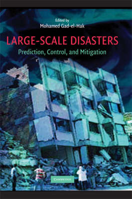Large-Scale Disasters: Prediction, Control, and Mitigation (Hardback)