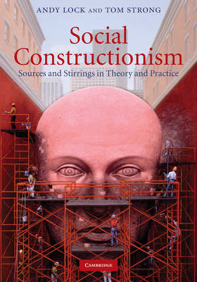 Social Constructionism: Sources and Stirrings in Theory and Practice (Hardback)