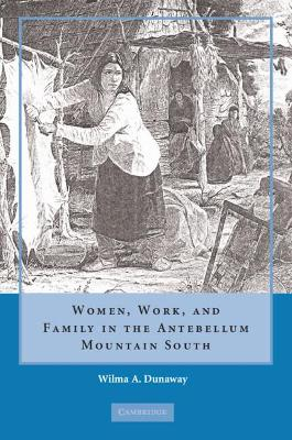 Women, Work and Family in the Antebellum Mountain South (Hardback)
