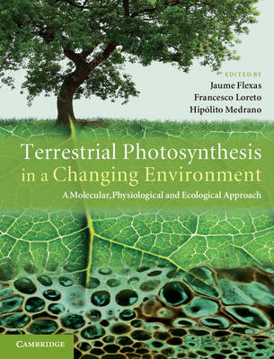 Terrestrial Photosynthesis in a Changing Environment: A Molecular, Physiological, and Ecological Approach (Hardback)