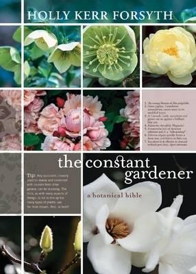 The Constant Gardener (Paperback)