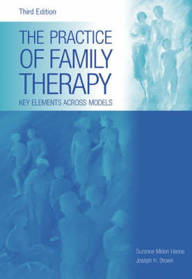 The Practice of Family Therapy: Key Elements Across Models (Hardback)