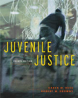 Juvenile Justice: With Infotrac (Hardback)