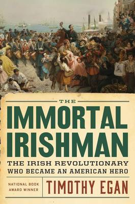 The Immortal Irishman (Hardback)
