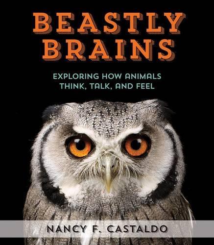 Beastly Brains (Hardback)