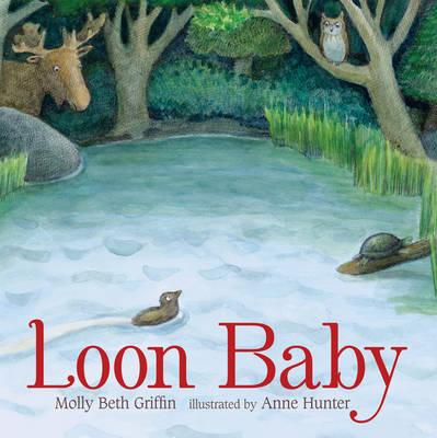 Loon Baby (Hardback)