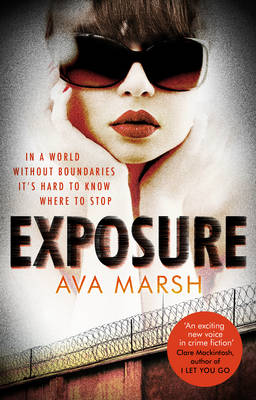 Exposure: The Most Provocative Thriller You'll Read All Year (Paperback)