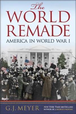 The World Remade: America in World War I (Hardback)
