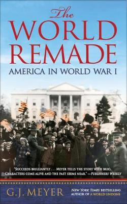 The World Remade: America in World War I (Paperback)