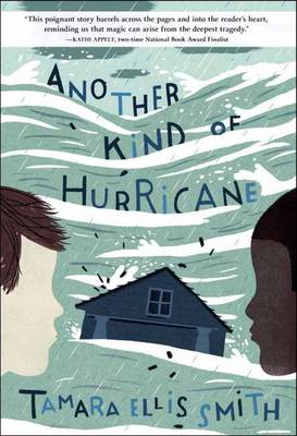 Another Kind Of Hurricane (Hardback)