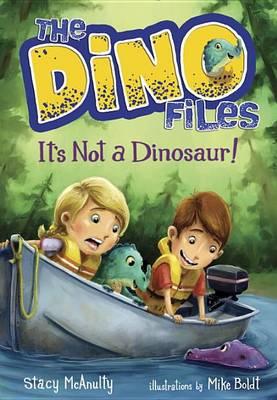 The Dino Files #3 It's Not A Dinosaur! (Hardback)